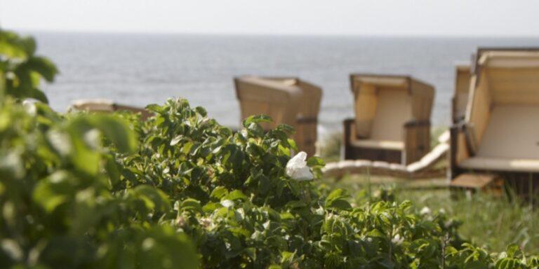 Hotel Miramar – Das kleine Grand am Meer
