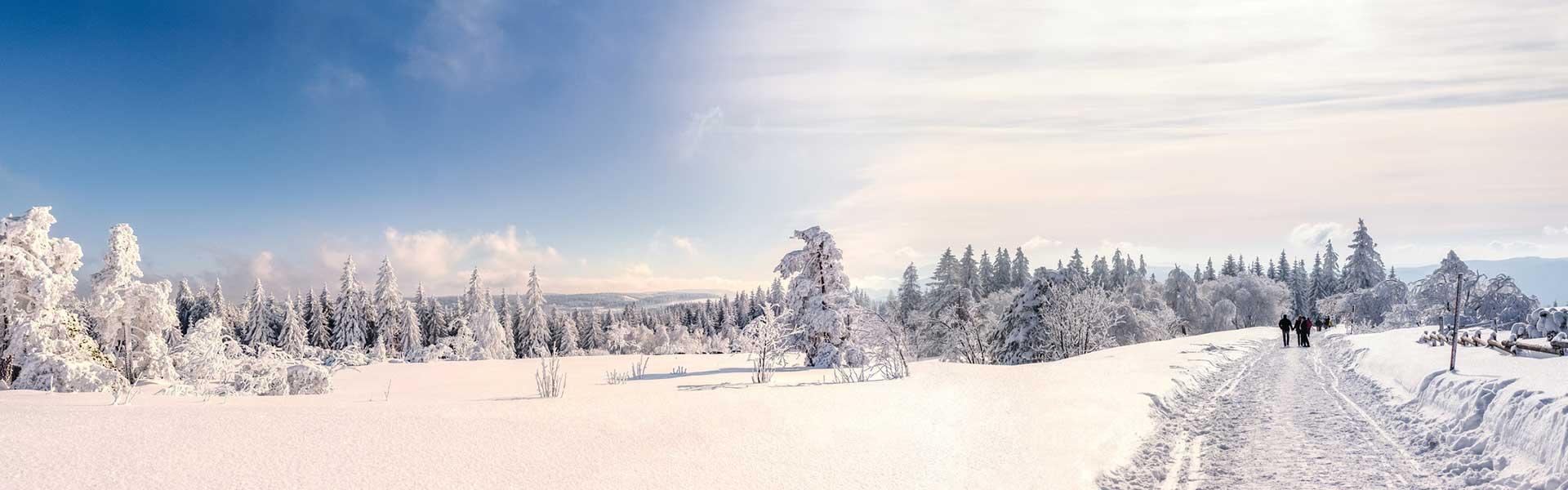 Winterwanderung-1920x600